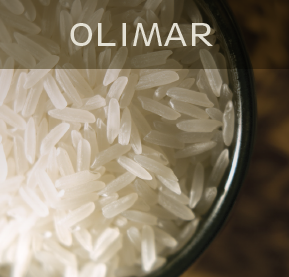 OlimarMiniatura